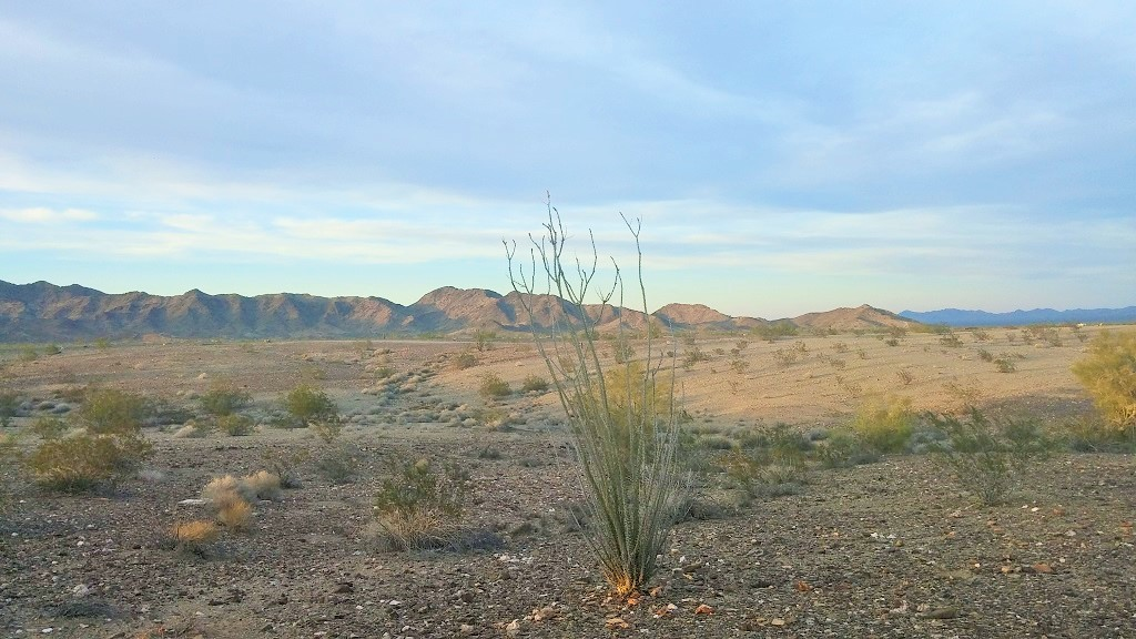 Boondocking! Quartzsite, Arizona - Live, Breathe, Move